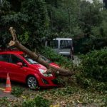 Protruding and sharp branches or fallen trees following a storm falling on a car
